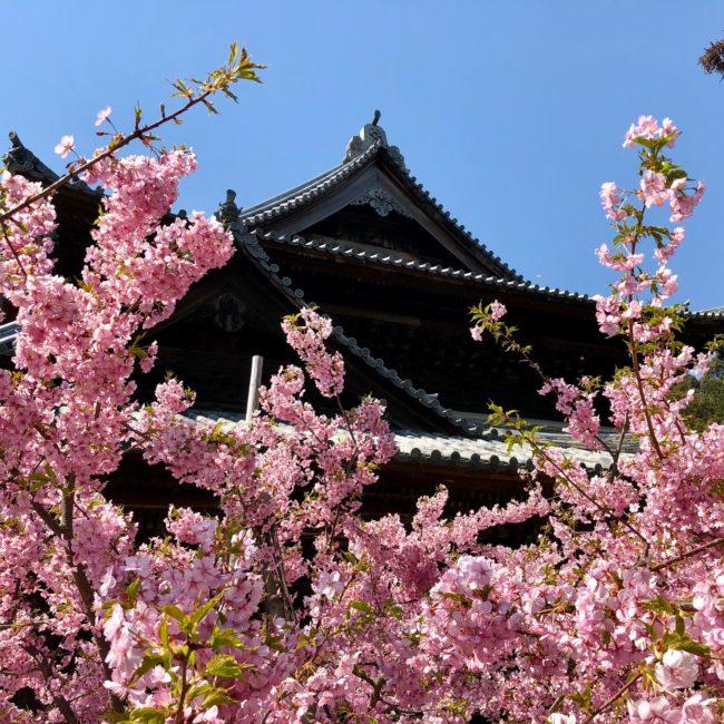 DAY12 和歌山県で西国巡礼
